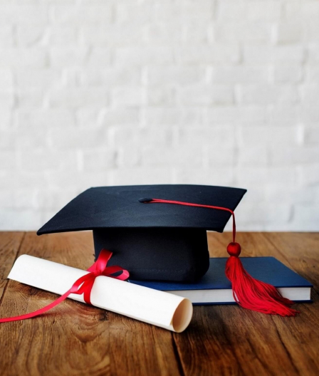 Dual Degree vs. Double Major: What's the Difference & Are They Worth It?
